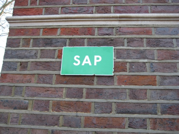 A short description of the author: sap as in 'idiot', not 'vigour'. Ironic?