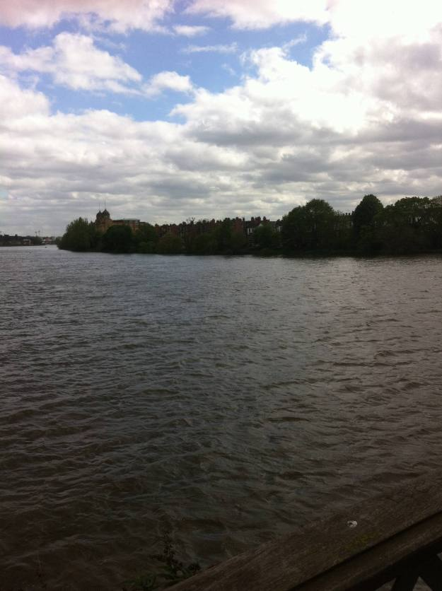 The Thames from Hammersmith Bridge. Alligators just visible at southern bank.