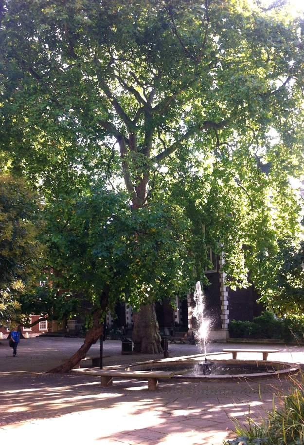 Fountain's Court 2